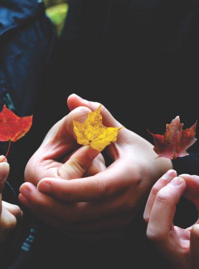 The Basic Girl's Bay Area Fall Checklist